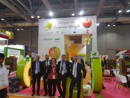Ad Asia Fruit Logistica il punto sull'export delle mele italiane in attesa delle missioni degli ispettori di Vietnam e Taiwan